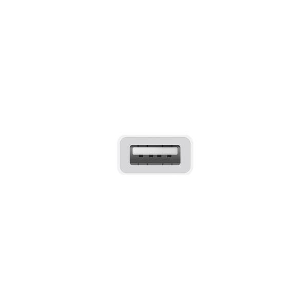 Apple Cable Adaptador USB-C a USB – Adaptador
